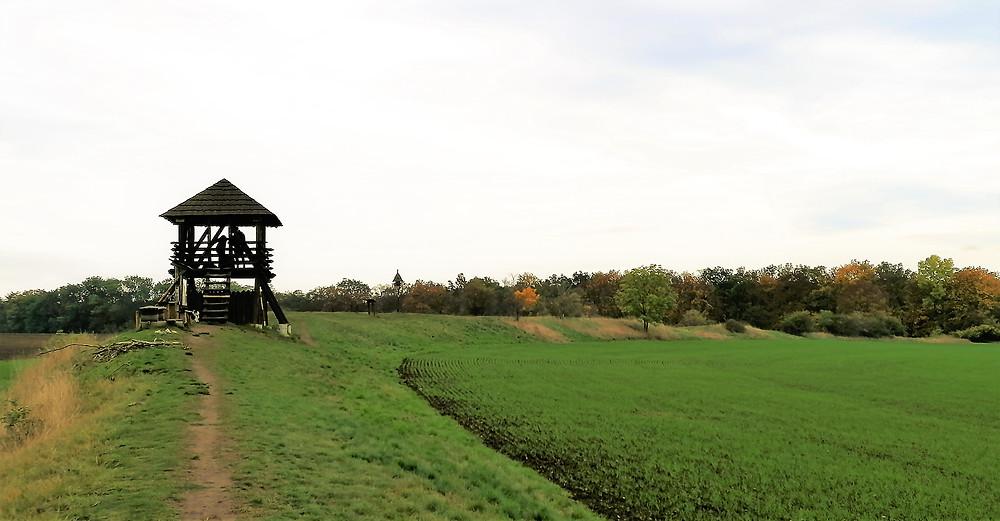 Rozhledna Stradonka připomíná strážní věž bývalého keltského oppida