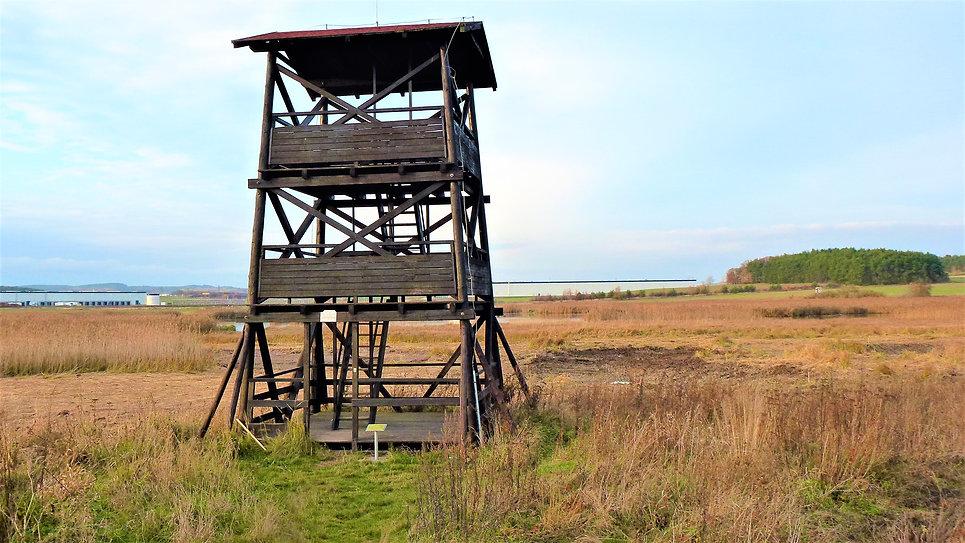 Vyhlídková věž Nový rybník.JPG