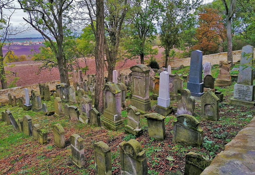 Židovský hřbitov Hřivčice