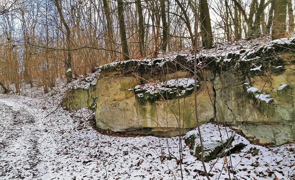 Lokalita Přírodní památky Vrbka