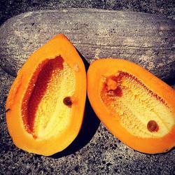 Mini Papaye
