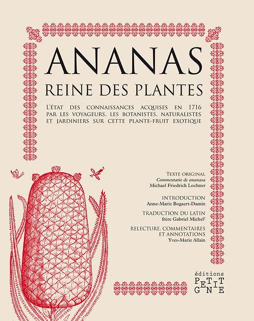 Ananas, Reine des plantes