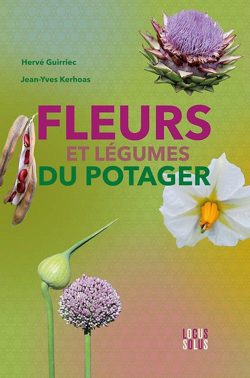 Fleurs et légumes du potager