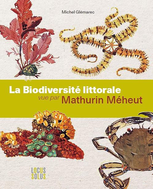 La biodiversité littorale vue par Méheut
