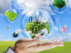 What is Economic Sustainability and Why It Is Important
