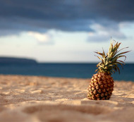 Rum: The Tropical Age