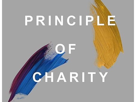 Interview with Principle of Charity podcast