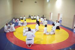 На семинаре айкидо