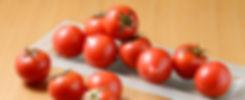有微研フルーツトマト