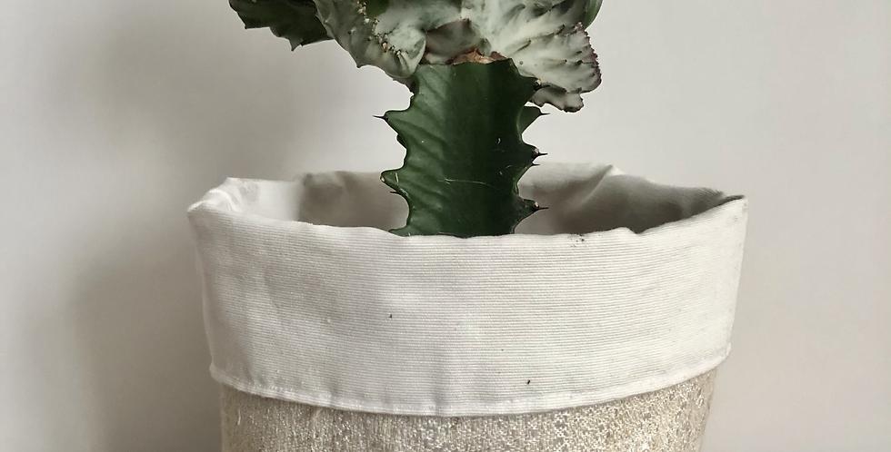 Flax and Ivory Sleeve