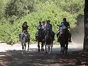 Ruta a caballo doñana