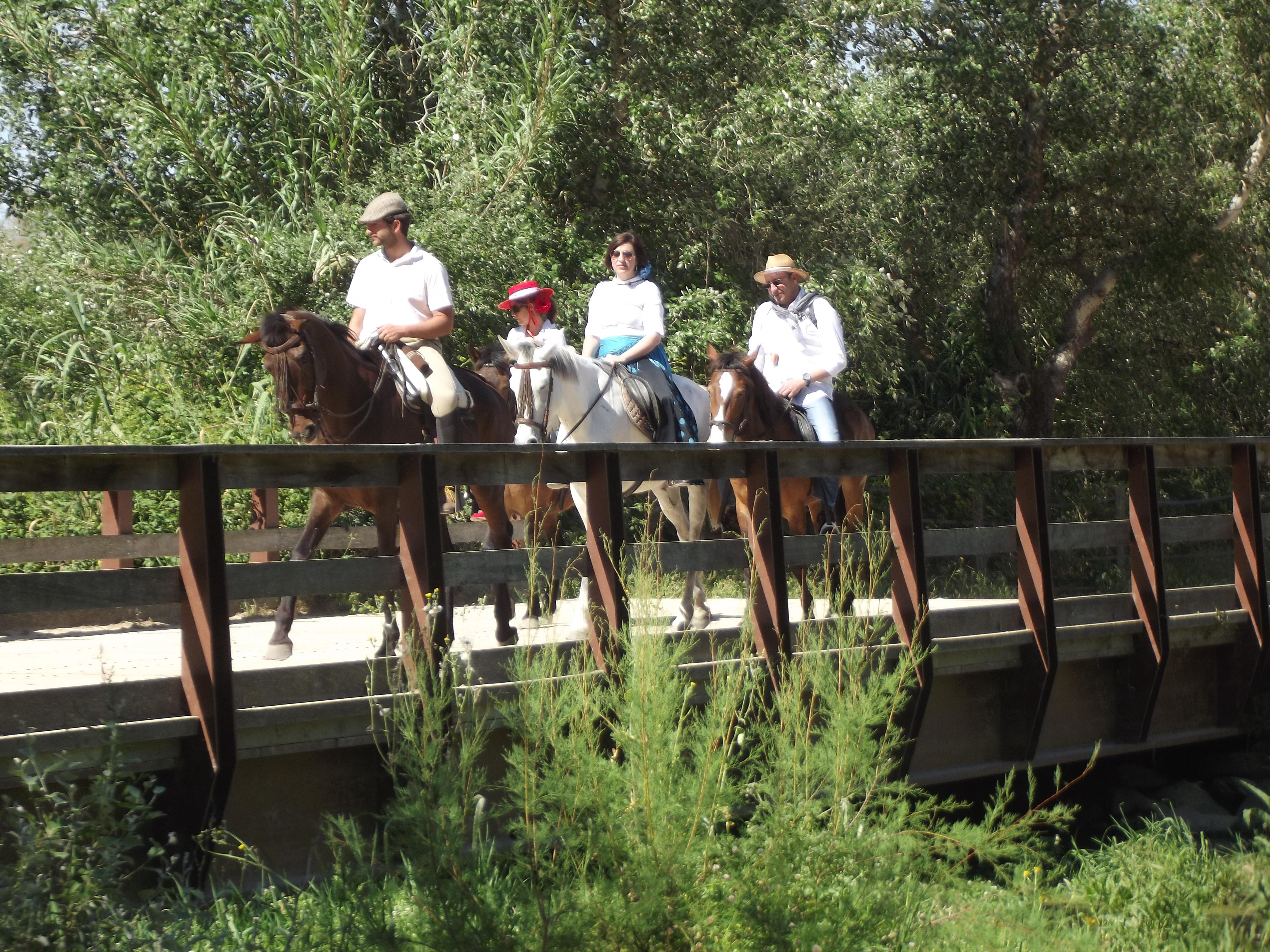 Ruta Experiencia Doñana Especial