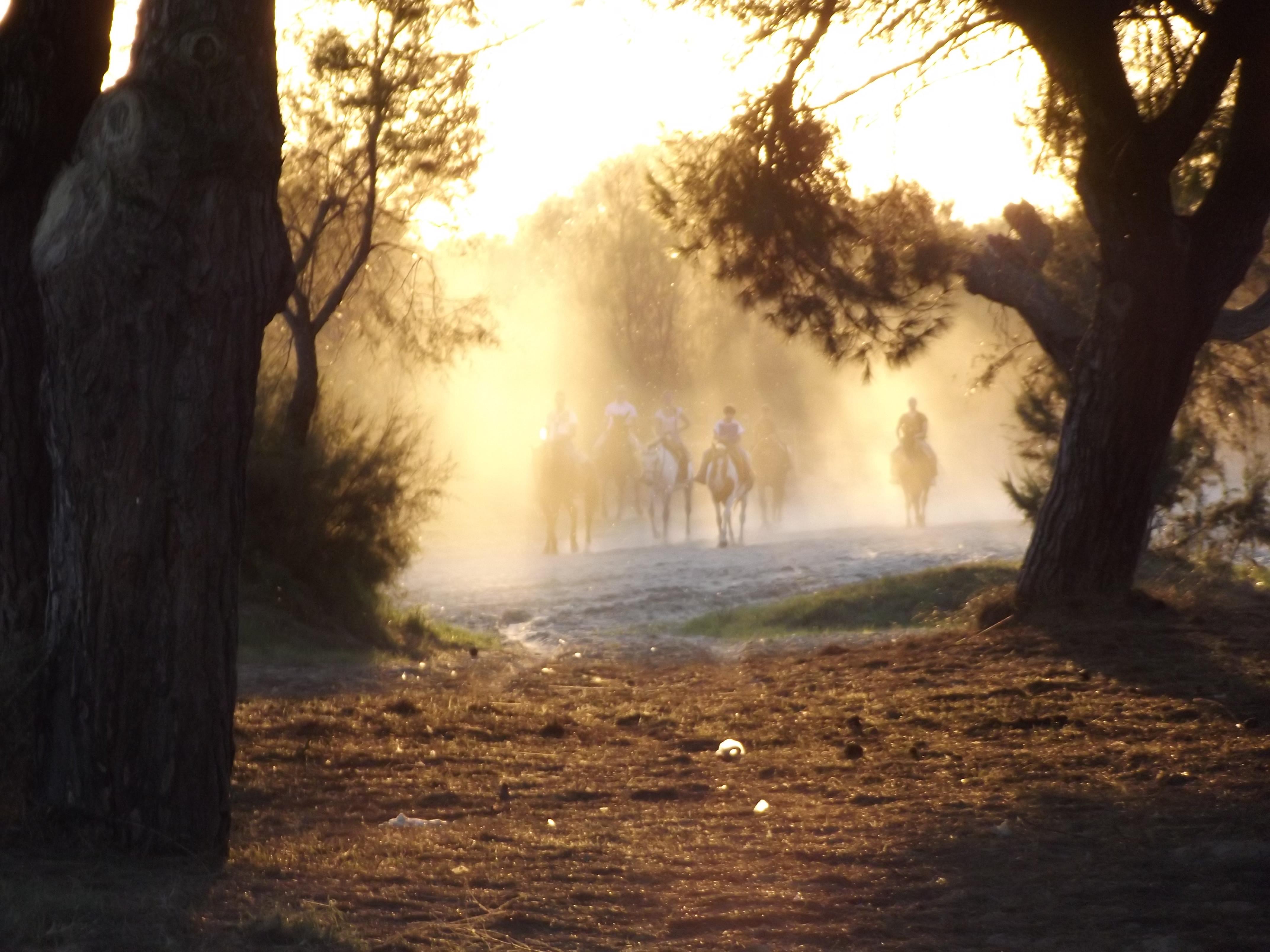 """Ruta """"Doñana Sunset"""""""