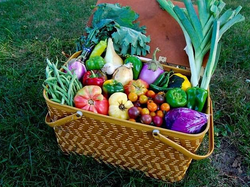 Adult Victory and Potager Gardening Class