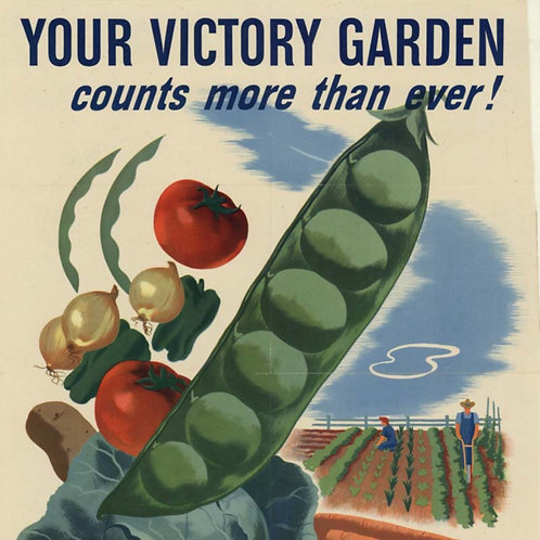 Victory and Potager Gardening