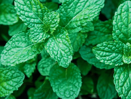 About Peppermint