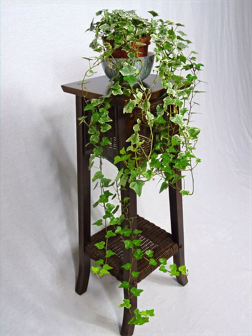 Retro Wood and Wicker Plant Stand