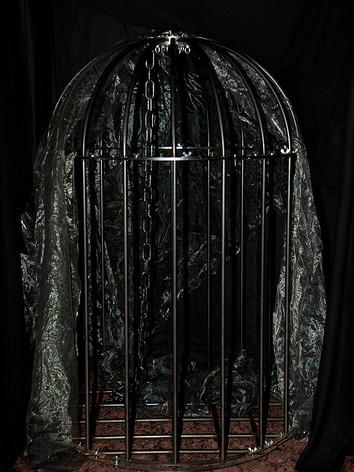 Käfig 2.jpg