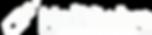 HSV_HailSolve_Logo_Primary_White.png