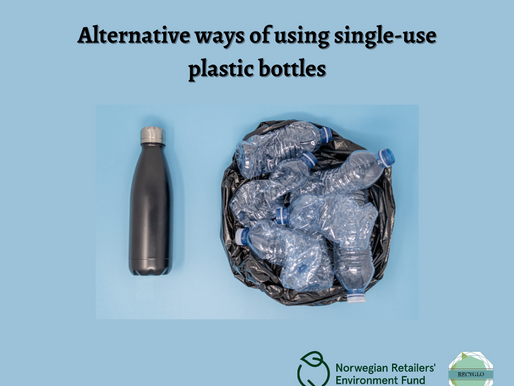 How can we reduce using single-use plastic bottles?