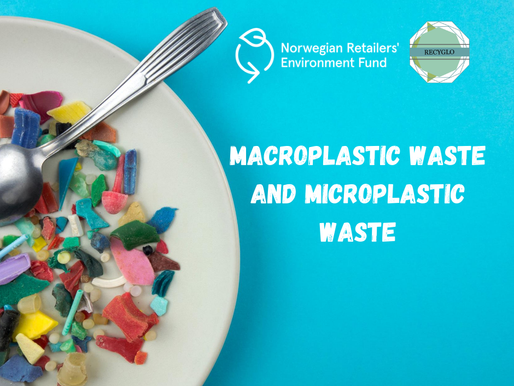 Macroplastic Waste and Microplastic Waste