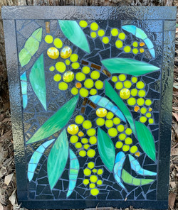 mosaic gum tree