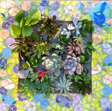 Mosaic succulent box
