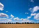 Wie_sieht_der_Himmel_aus_-bx_Gerstenfeld