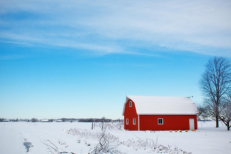 winter-barn-556696_1920.jpg