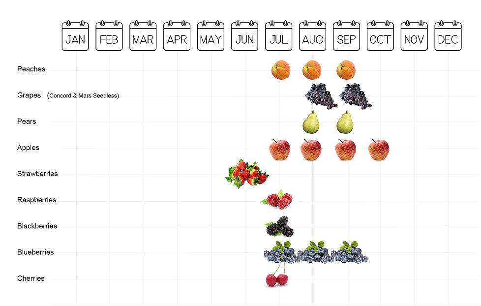 2019_fruit_calendar_150rgb.jpg