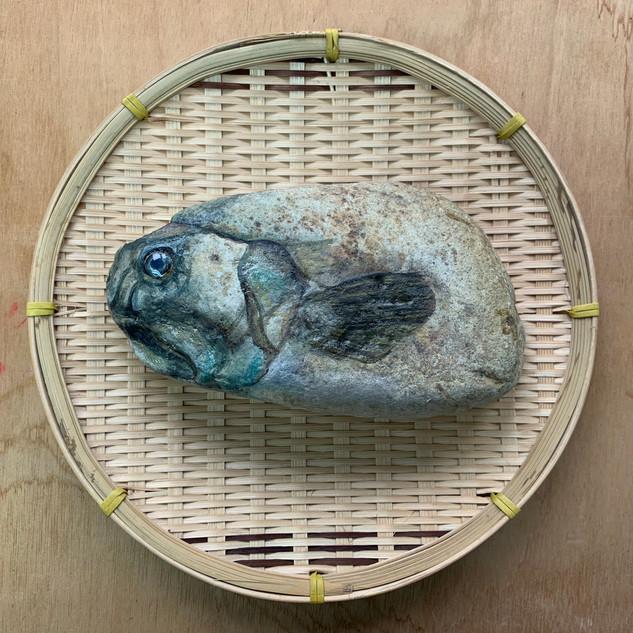 Medium Well Salted Fish