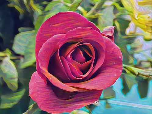 Lipstick Red Orange June Birth Flower