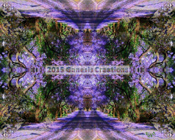 Purple Pathway signed by Bonnie Vent