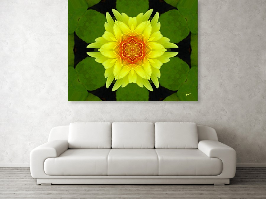 yellow-water-lily-bonnie-vent with sofa