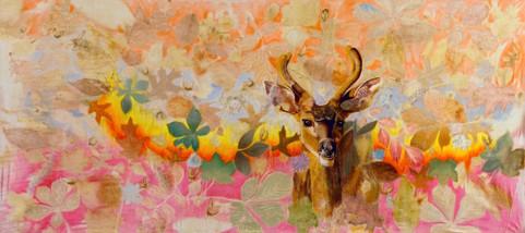 Buck Deer in Forest Fire