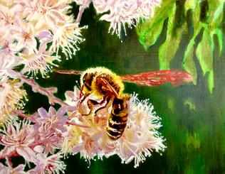 Stylish Wasp