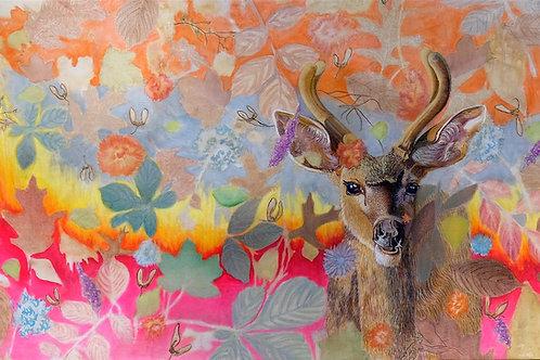 Buck in Forest Fire