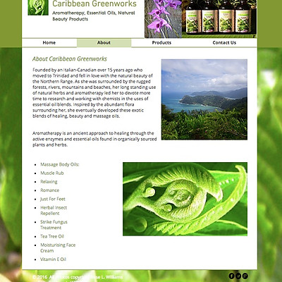 Caribbean Greenworks Product Photography & Web Design