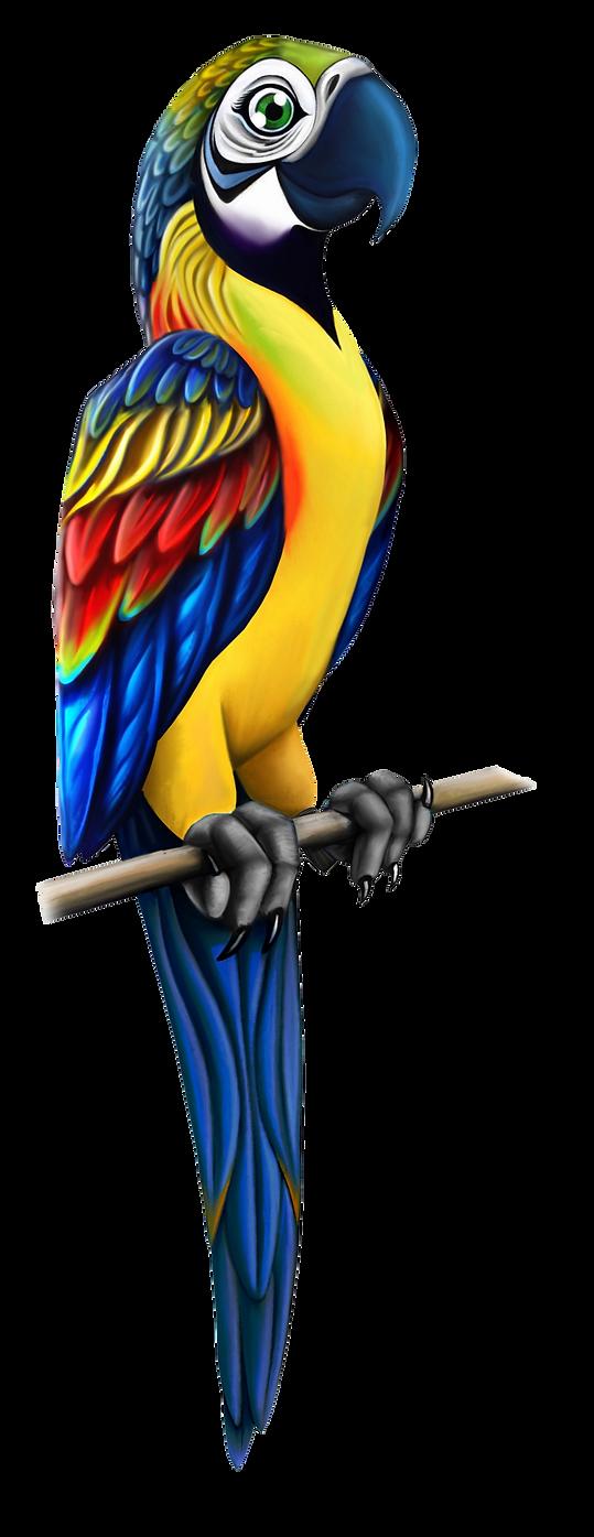 Parrots_Aji11111.png