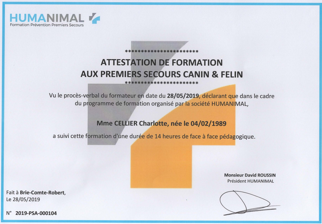 Attestation formation secourisme canin 2