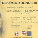 Diplome honneur chien visiteur 2018.jpg