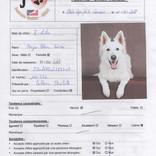 Evaluation  lilou chien visiteur 2018_1.