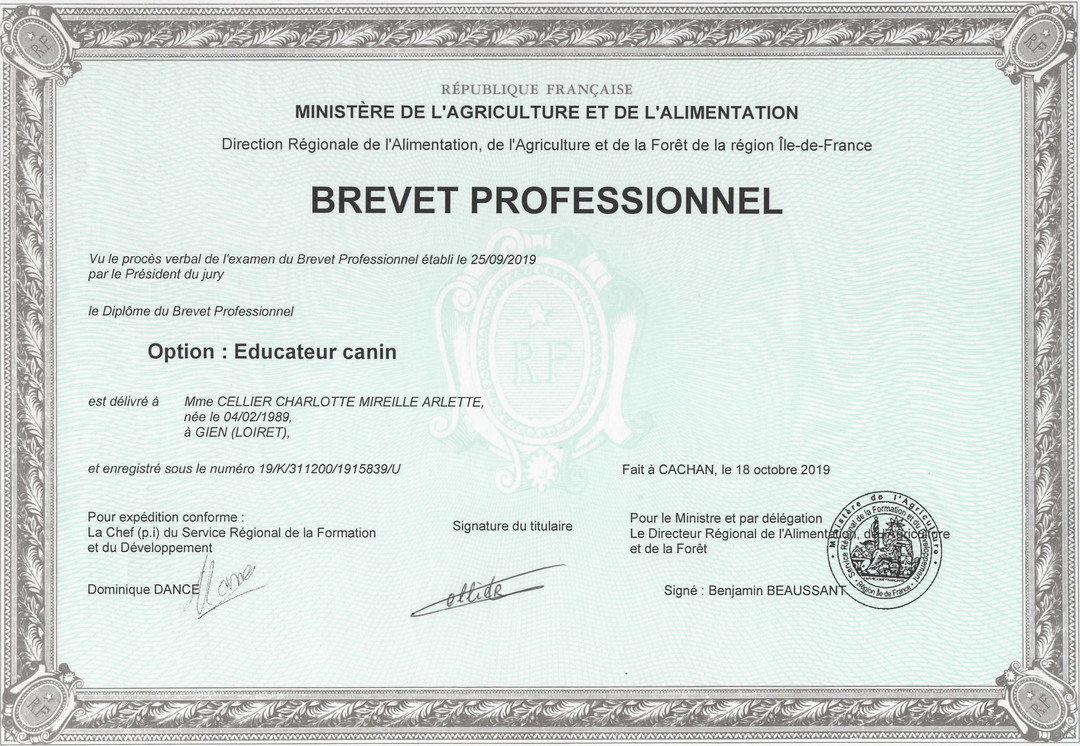 BP educateur canin charlotte cellier 201