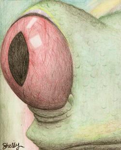 Frog's Eye (2009)