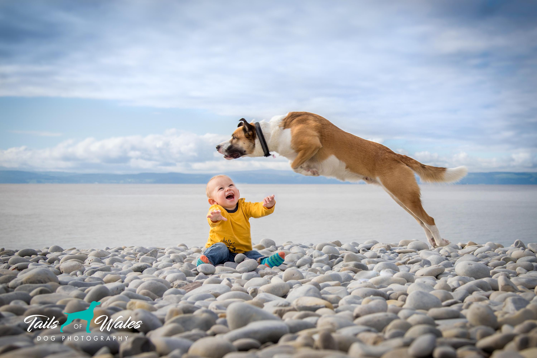Me + My Dog