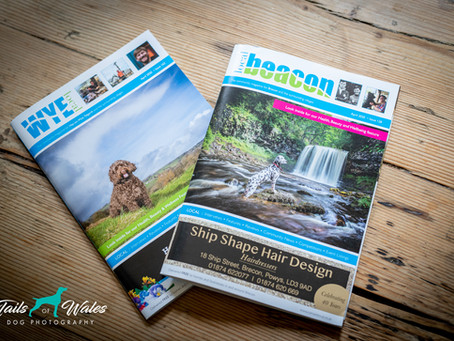 Photoshoots for Charity, Enter the Tails of Wales Dog-Athon