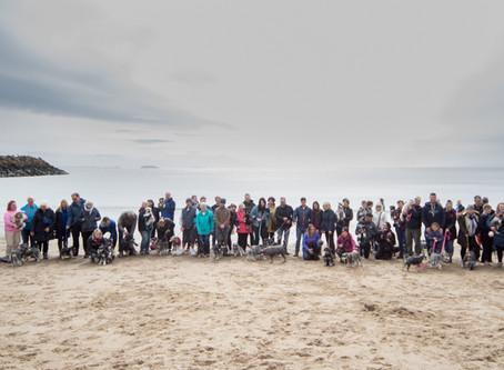 Mad About Schnauzer Walks UK-Barry Island 28/04/19
