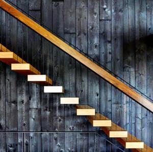 Pika pika Charred Japanese Timber Yakisugi