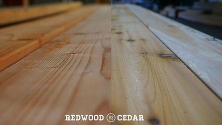 redwoodvscedar.jpg