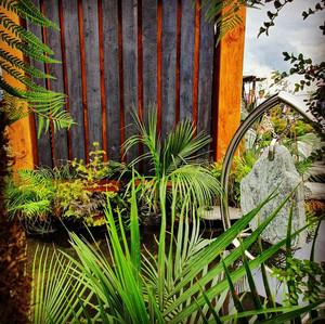 Charred Timber New Zealand Yakisugi